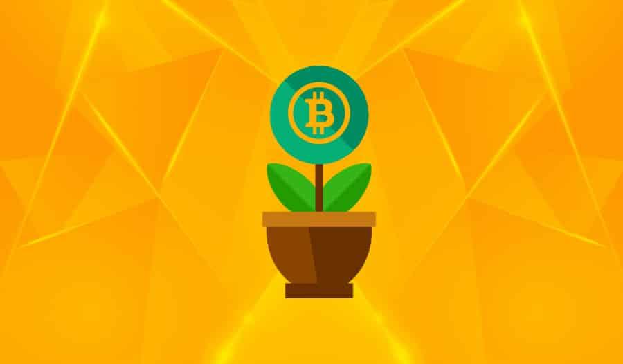 Инвестируй в криптовалюту получить быстрый кредит в банке москвы