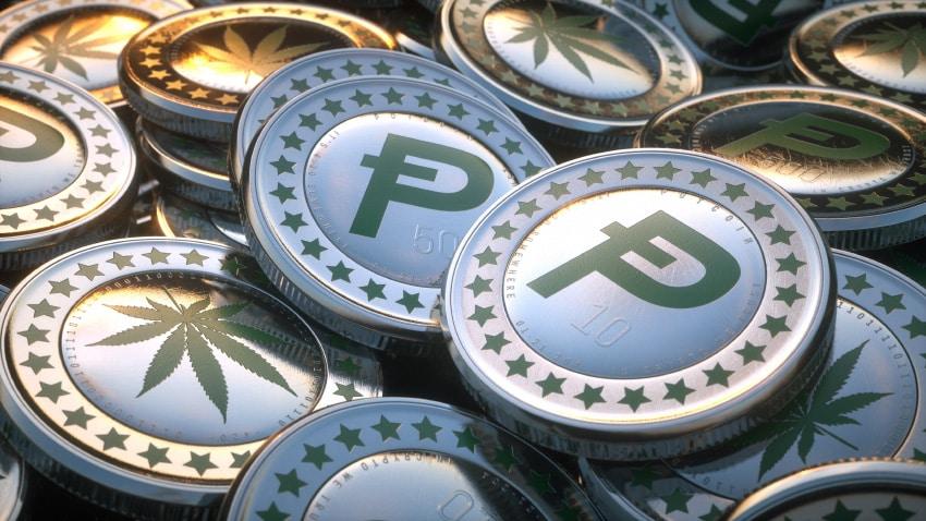 Криптовалюта для расчета за продукты из марихуаны Pot Coin