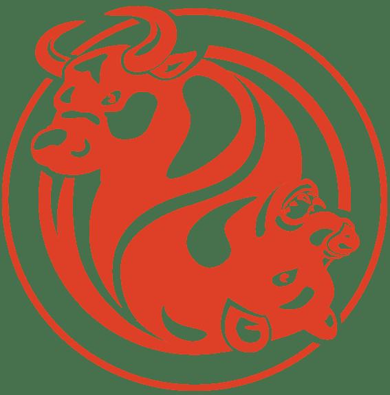 FXopen лого